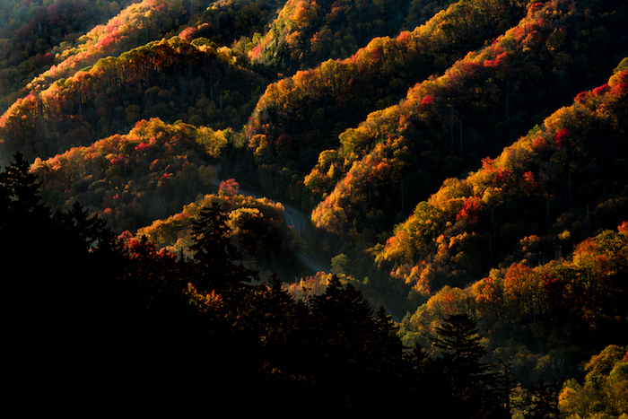 Great Fall Color In The Smoky Mountains