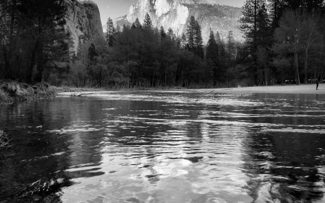 Spring in Yosemite!